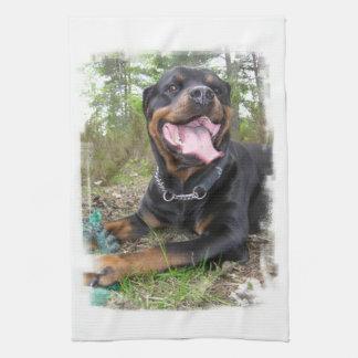 Rottweiler Photo Kitchen Towel
