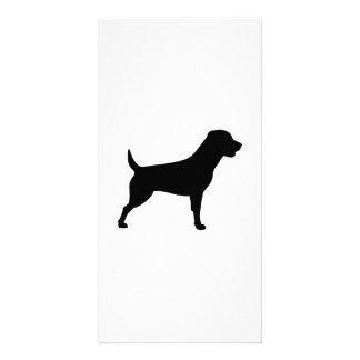 Rottweiler Photo Card
