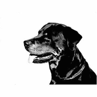 Rottweiler photosculpture cutout