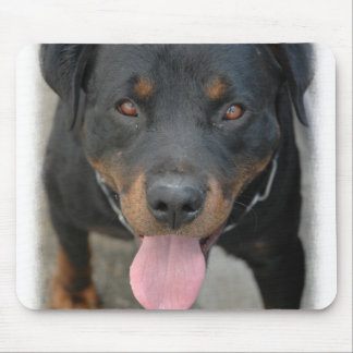 Rottweiler Picture Mouse Pad