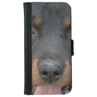 Rottweiler Picture iPhone 6 Wallet Case