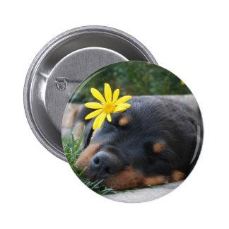 Rottweiler Pin Redondo De 2 Pulgadas