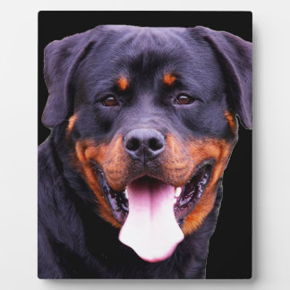 Rottweiler Display Plaques