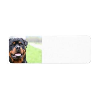 Rottweiler.png Etiqueta De Remitente