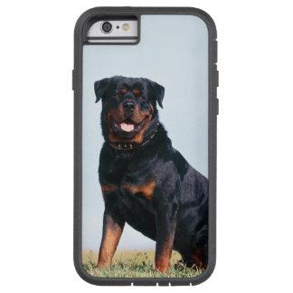 Rottweiler Portrait iPhone 6 Case Tough Xtreme