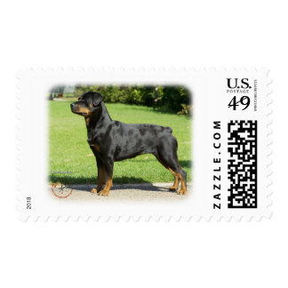 Rottweiler Postage Stamps