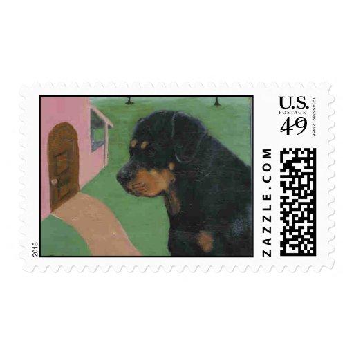 Rottweiler postage original painting