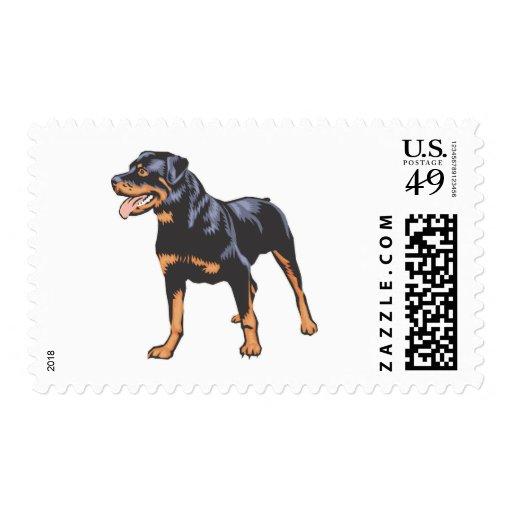 Rottweiler Postage Stamp
