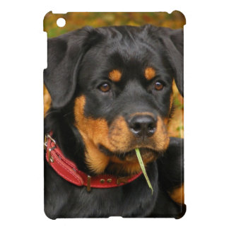 Rottweiler Pup Lying On The Ground In Forest Case For The iPad Mini