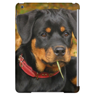 Rottweiler Pup Lying On The Ground In Forest iPad Air Case