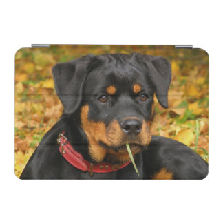 Rottweiler Pup Lying On The Ground In Forest iPad Mini Cover