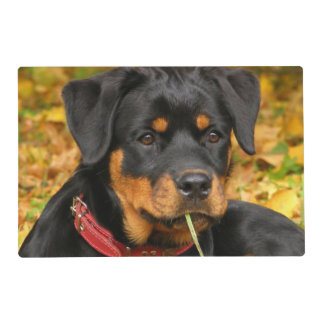 Rottweiler Pup Lying On The Ground In Forest Placemat