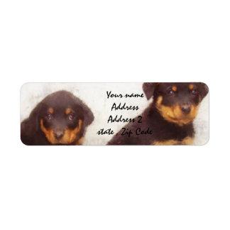 Rottweiler puppies label