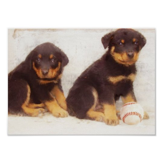 Rottweiler puppies poster