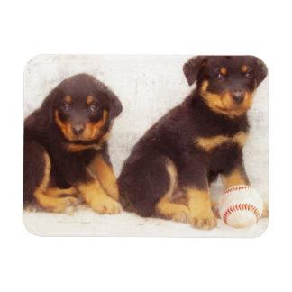 Rottweiler puppies rectangular photo magnet