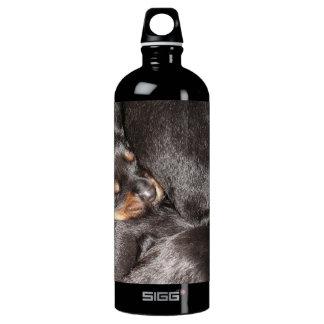 Rottweiler Puppies Water Bottle