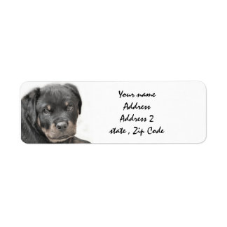 Rottweiler puppy Address Labels