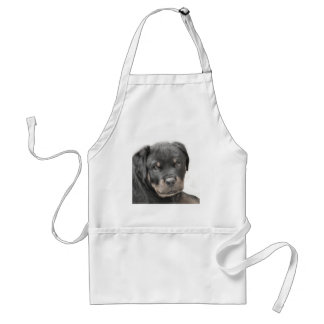 Rottweiler puppy adult apron