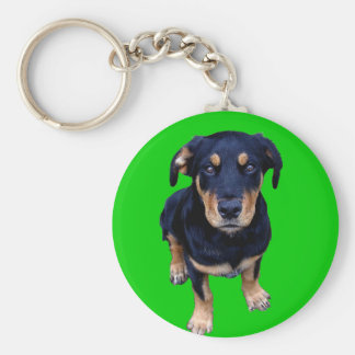 rottweiler puppy black tan dog eye contact keychain
