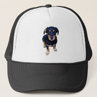 rottweiler puppy black tan dog eye contact trucker hat