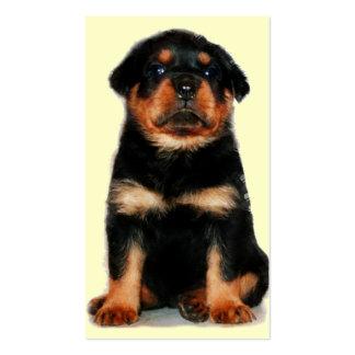 Rottweiler puppy business cards