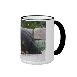 Rottweiler puppy coffee mugs
