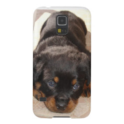Rottweiler Puppy Crouching Low Case For Galaxy S5
