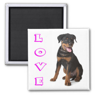 Rottweiler Puppy Dog Brown And Black Purple Love Magnet