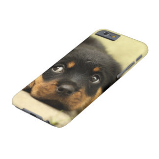 Rottweiler puppy dog curious barely there iPhone 6 case