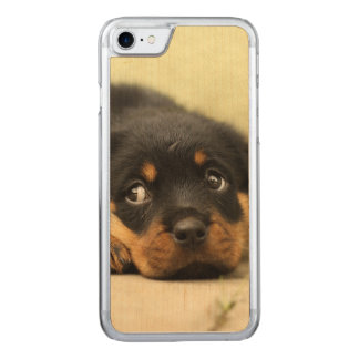 Rottweiler puppy dog curious carved iPhone 8/7 case