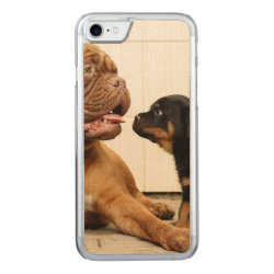 Carved Apple iPhone 7 Wood Case with Rottweiler Phone Cases design