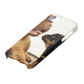 Rottweiler-puppy-dog-yearning iPhone SE/5/5s Case