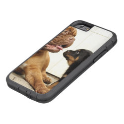 Rottweiler-puppy-dog-yearning Tough Xtreme iPhone 6 Case