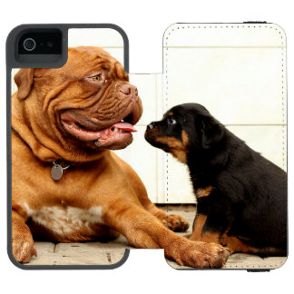 Rottweiler-puppy-dog-yearning Wallet Case For iPhone SE/5/5s