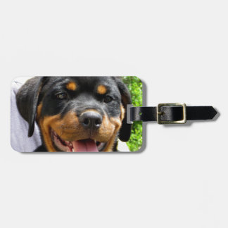 Rottweiler puppy face Dog Cute Tags For Bags