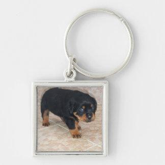 Rottweiler Puppy Looking Embarassed Keychain