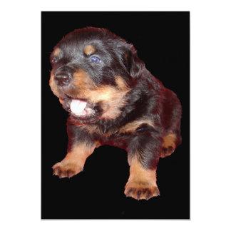 Rottweiler Puppy On Guard Duty Card