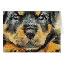 Rottweiler Puppy Portrait Cards