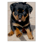 Rottweiler Puppy Running With Tongue Out Greeting Card