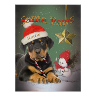 Rottweiler Puppy Santa Paws Poster