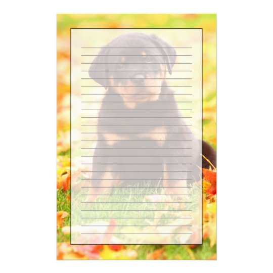rottweiler puppy sitting in autumn leaves stationery zazzle com