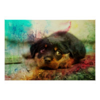 Rottweiler Puppy Watercolor Art Poster