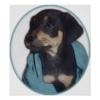 Rottweiler Puppy with Blanket Poster