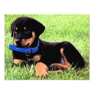 rottweiler pups card