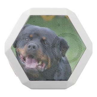 Rottweiler sonriente altavoces bluetooth blancos boombot REX