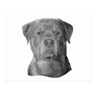 Rottweiler - Stylized Image - Add Your Own Text Postcard