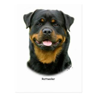 Rottweiler Tarjeta Postal