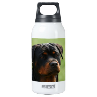 Rottweiler Thermos Bottle