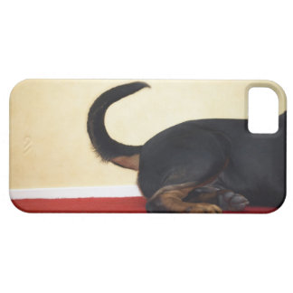 Rottweiler wagging tail, hind section iPhone SE/5/5s case