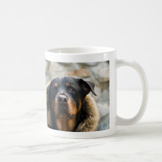 Rottweiler with Fur Hood Photo Mug